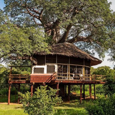 Tarangire Treetops accommodation exterior view of Treehouse Suite